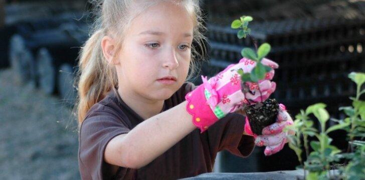 Ir vaikai gali kurti daržą: patarimai, ką nuveikti kovo mėnesį
