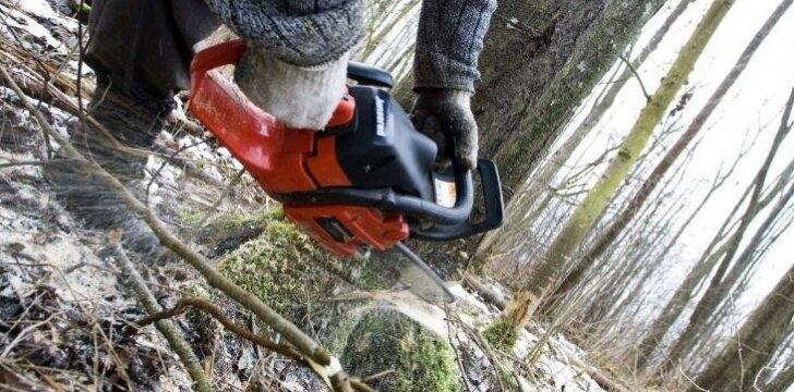 Savininkų požiūris į miško kirtimą kardinaliai skiriasi