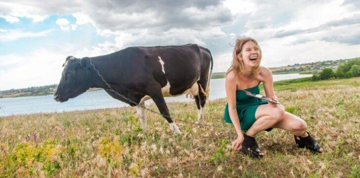 Iš lenktynių trasos – į kaimą melžti karvės