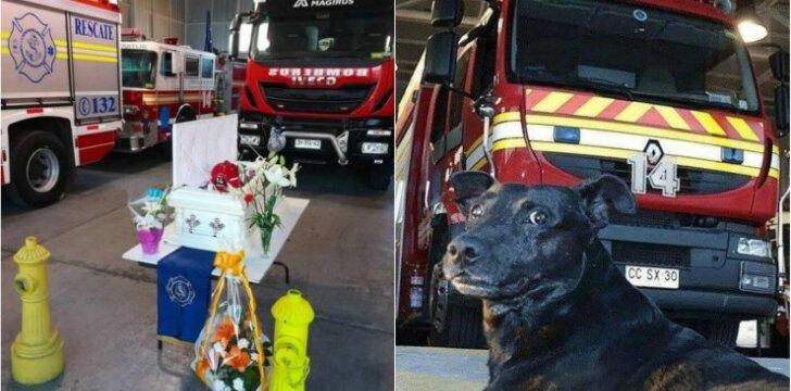 Ugniagesiai gelbėtojai išlydėjo keturkojį bendražygį