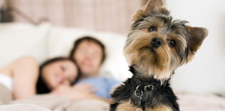 """""""Šuo lovoje netrukdo seksui"""". Ar tikrai? <sup style=""""color: #ff0000;"""">(gamtininko komentaras)</sup>"""