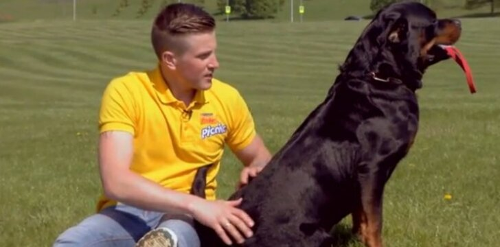 11 - oji dresūros pamoka: kaip derėtų žaisti su šunimi?