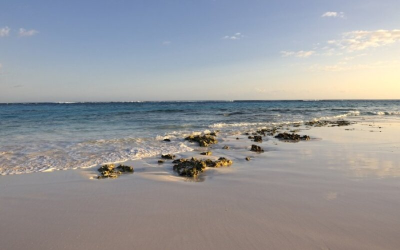Bahamos