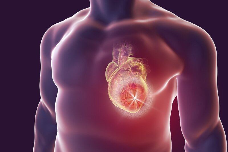 Ką vartoti vairuotojui, kuriam skauda širdį. Vaistiniai vaistai