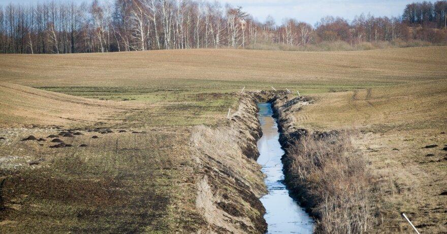 Pasaulinė gamtos apsaugos organizacija