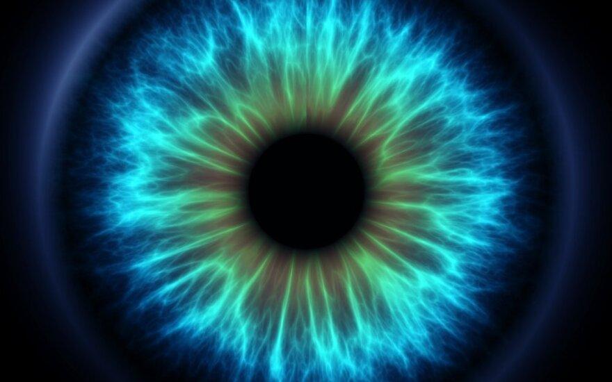 Akių tinklainės gelbėjimo laikas – suskaičiuotas