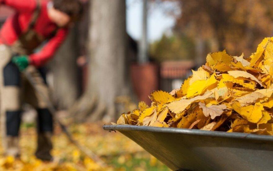 10 darbų, kuriuos privalu padaryti, paliekant sodą žiemoti