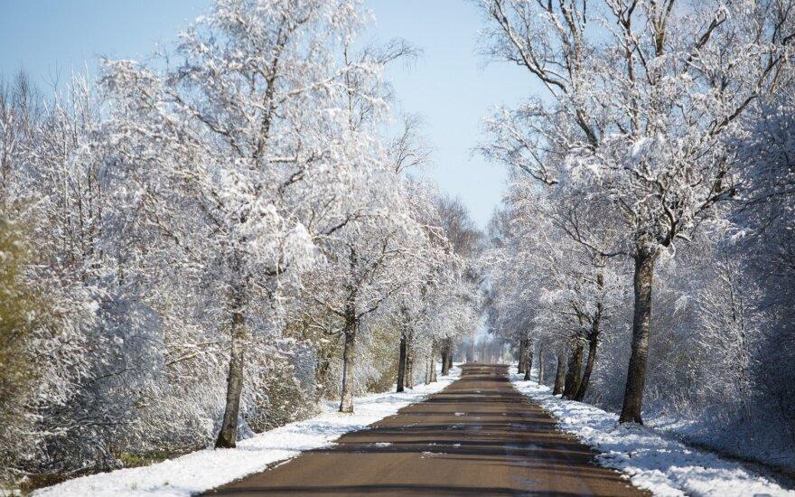 Orai: sulauksime ir tikro sniego