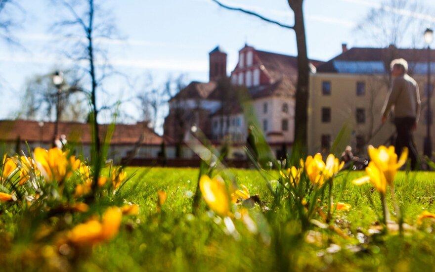 Šiltas savaitgalis nebus tik trumpas pavasario nuotykis