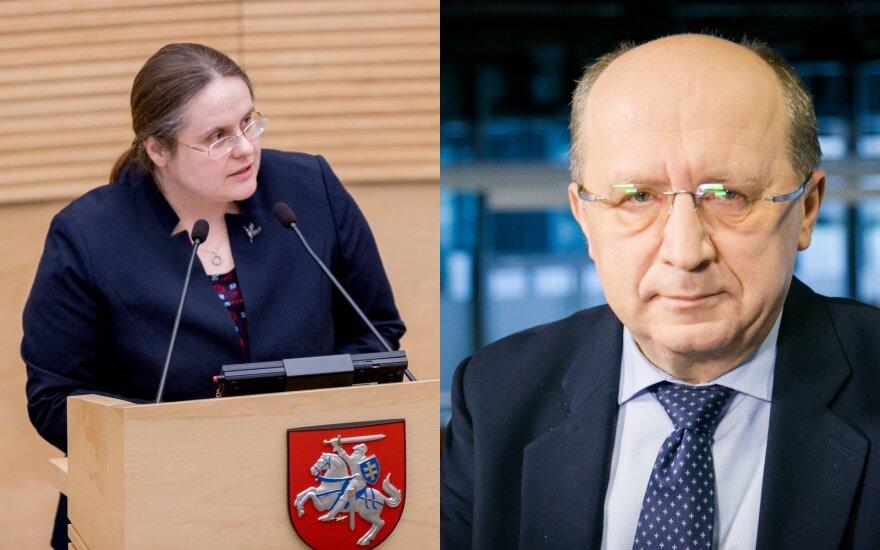 Klausimas, kuriuo sutaria Kubilius ir Širinskienė, suskaldė Seimą