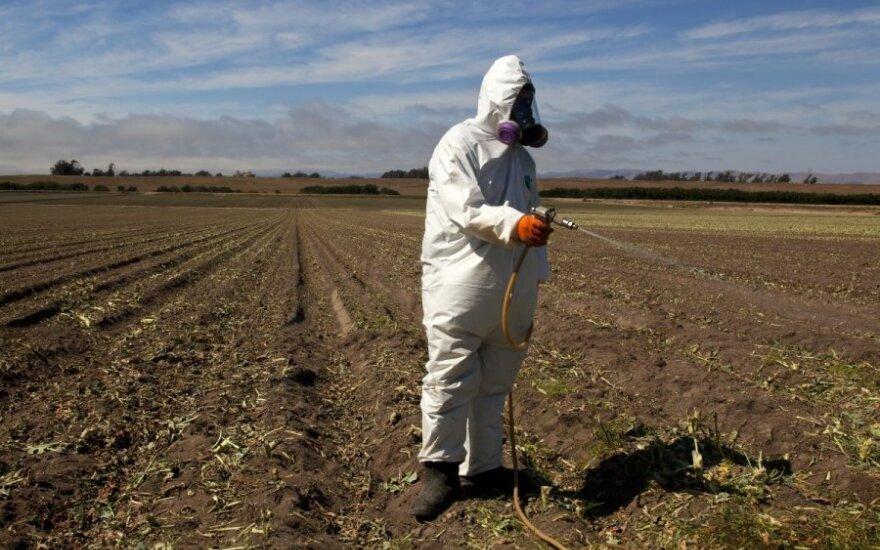 Herbicidais purkšti laukus reikia specialios aprangos ir dujokaukės, tačiau vėliau išaugę produktai ramiausiai tiekiami vartotojams