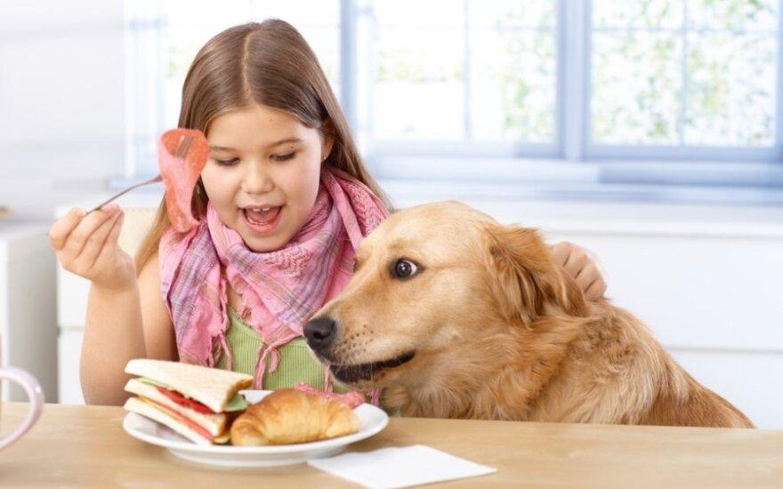 Sumuštinis ar dribsniai: kaip pusryčiai veikia moksleivių sveikatą?