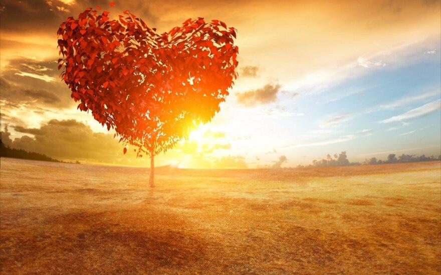 Nepasisekusios meilės istorija vyro akimis