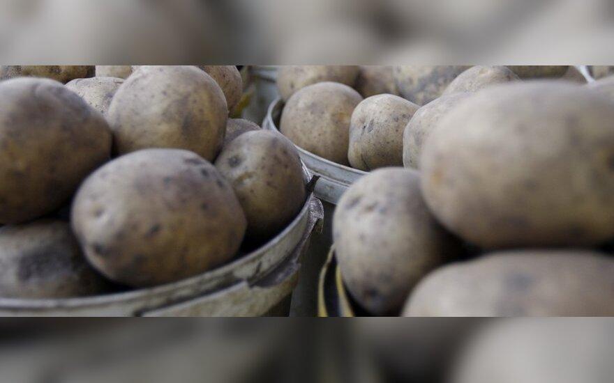 Prekybos centruose - nuodingos bulvės?