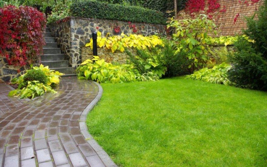 Kotedžo sodas: kaip jame susikurti nuosavą poilsio oazę?