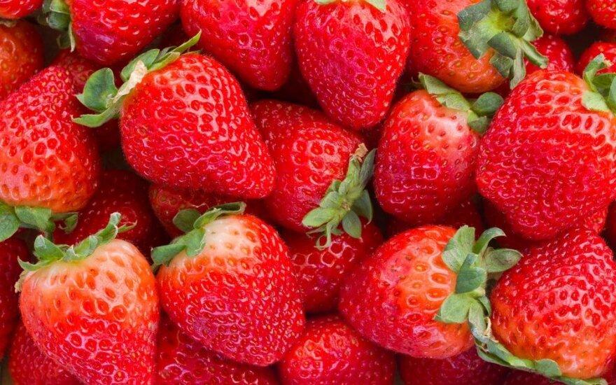 Braškių nauda sveikatai: saugo skrandį, didina pajėgumą