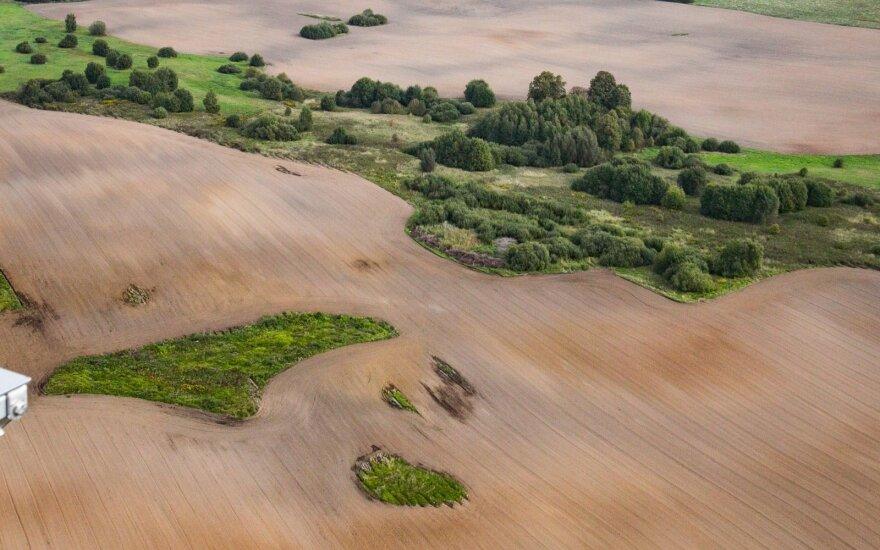 Vaizdas nuo vėjo jėgainės viršaus