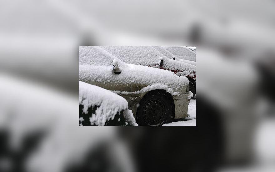 Sniegas, apsnigti automobiliai, žiema