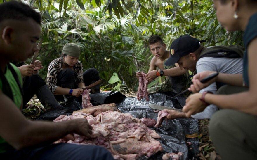 Kolumbijos Kongresas ratifikavo taikos sutartį su FARC