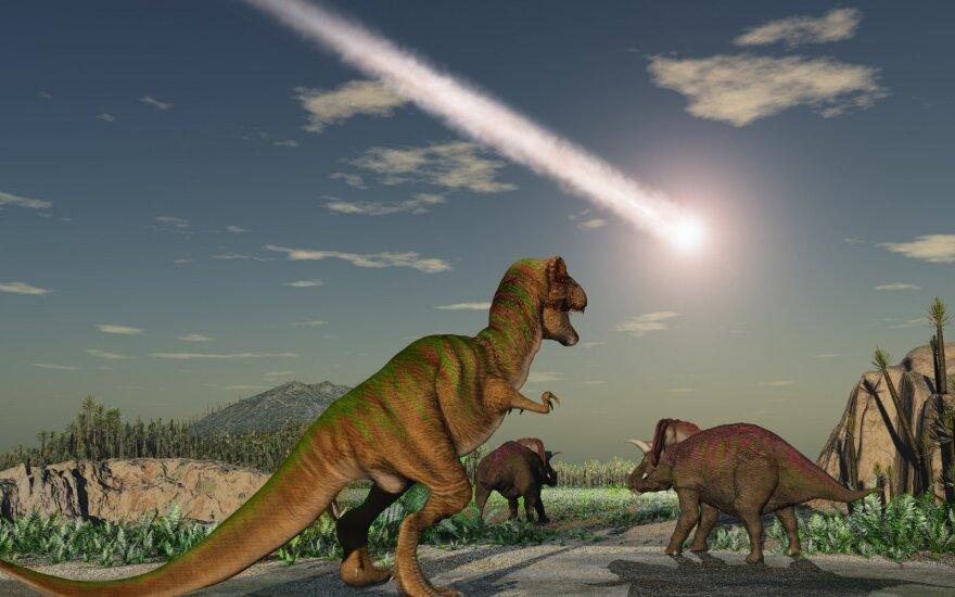 Asteroidas, pražudęs dinozaurus