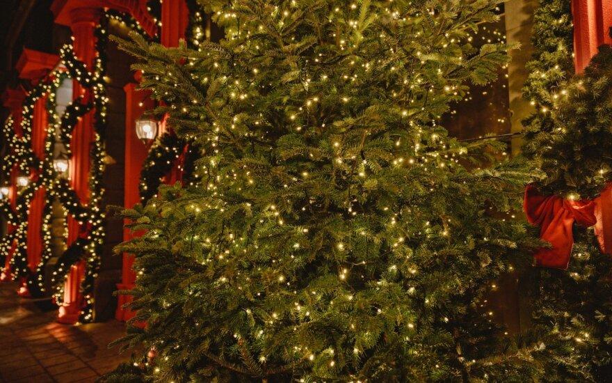 """Restorano """"Sugamour"""" kalėdinės dekoracijos"""