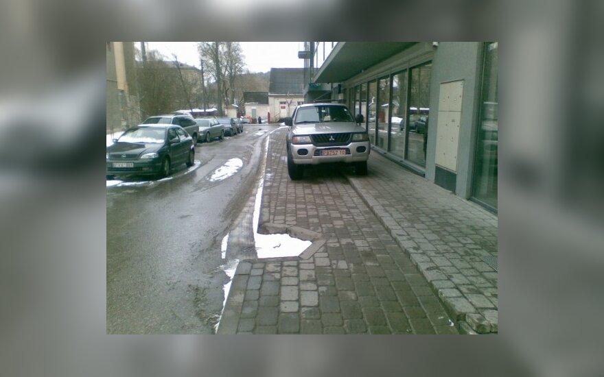 Vilniuje, Linkmenų g. 5/66. 2010-03-18, 11.10 val.