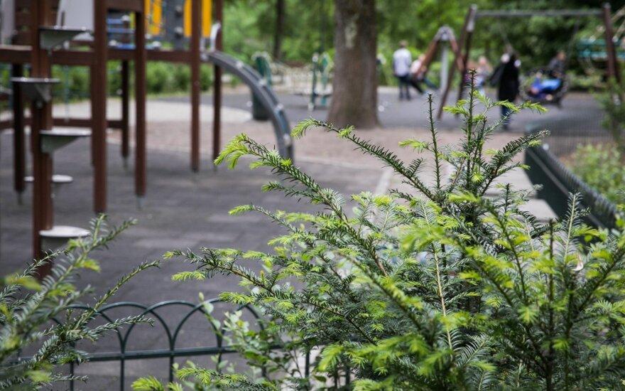 Vaizdas prie vaiko žaidimų aikštelės Bernardinų sode išgąsdino vilnietę