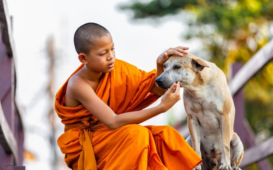 Tibetietis vaikas