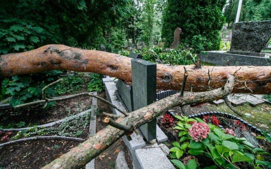 Škvalas nusiaubė Kauno kapines: išvirto medžiai, išplauti kapai