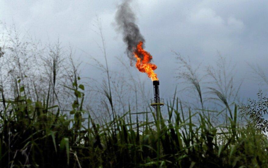 Naftos kainos smuko, OPEC sprendimas dėl tiekimo - dėmesio centre