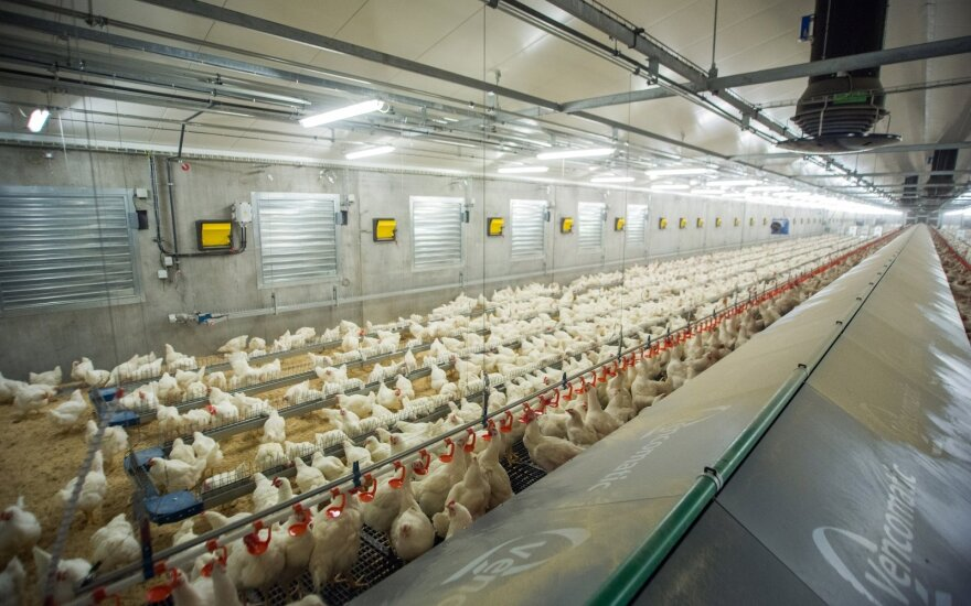 Vilnius and Kaisiadorys poultry farms plan export expansion to UAE