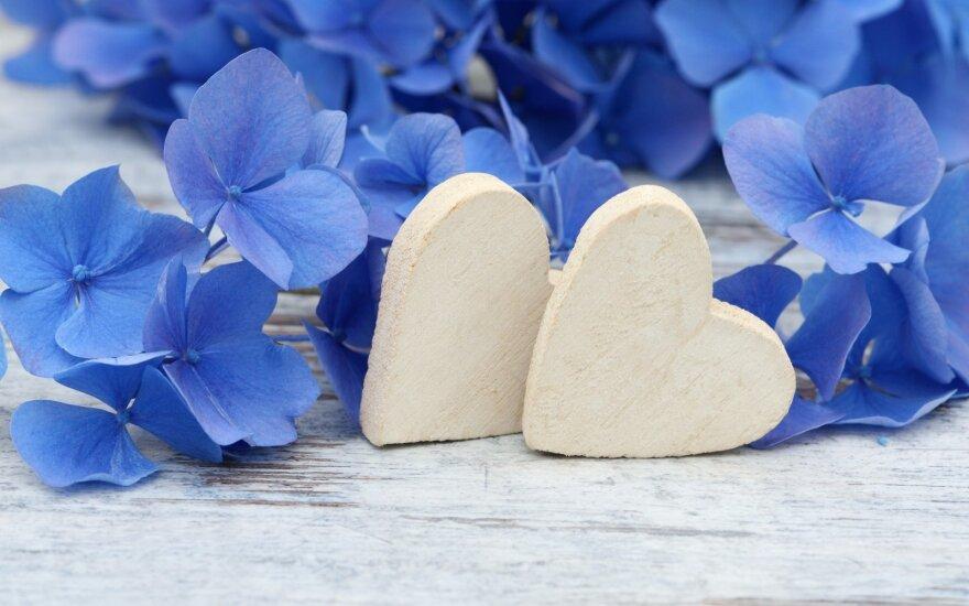 Astrologės Lolitos prognozė rugpjūčio 24 d.: daugiau meilės