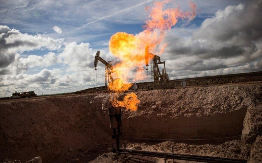 JAV prognozuoja, kiek metų: pasaulis bus priklausomas nuo naftos