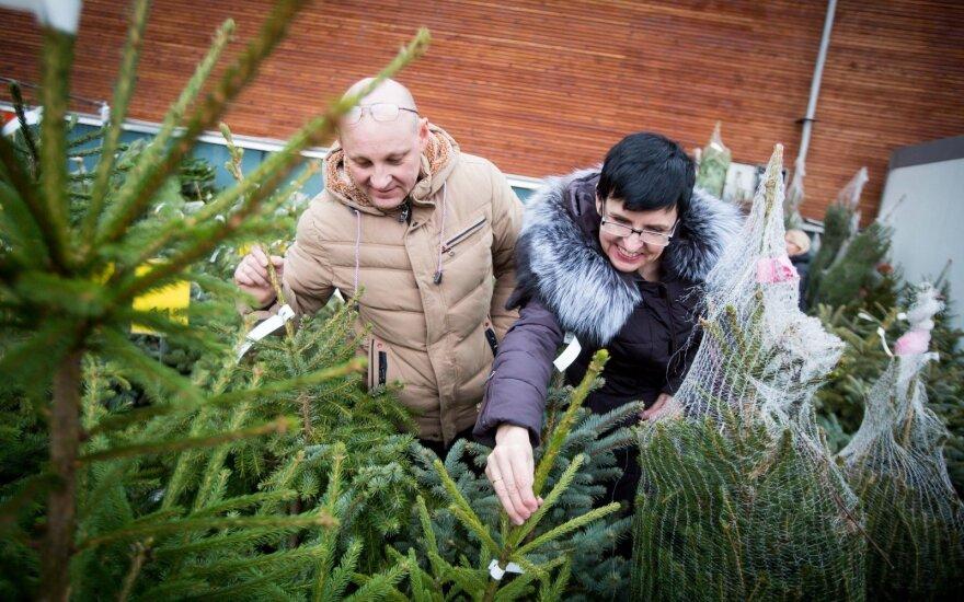 Kurjeriai: prasideda kalėdinės prekybos bumas