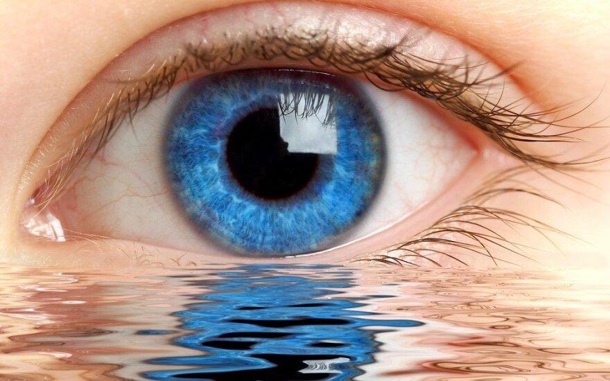 20 įdomių faktų apie akis, kurių greičiausiai dar nežinojote