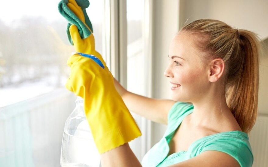 Kaip efektyviau tvarkyti namus?