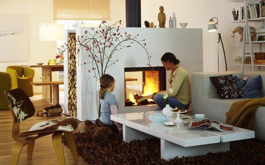 Krosnelė ar židinys: ką pasirinkti kuriant jaukumą namuose?