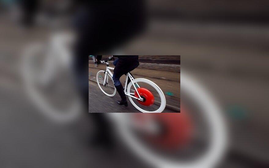 Kopenhagos ratas