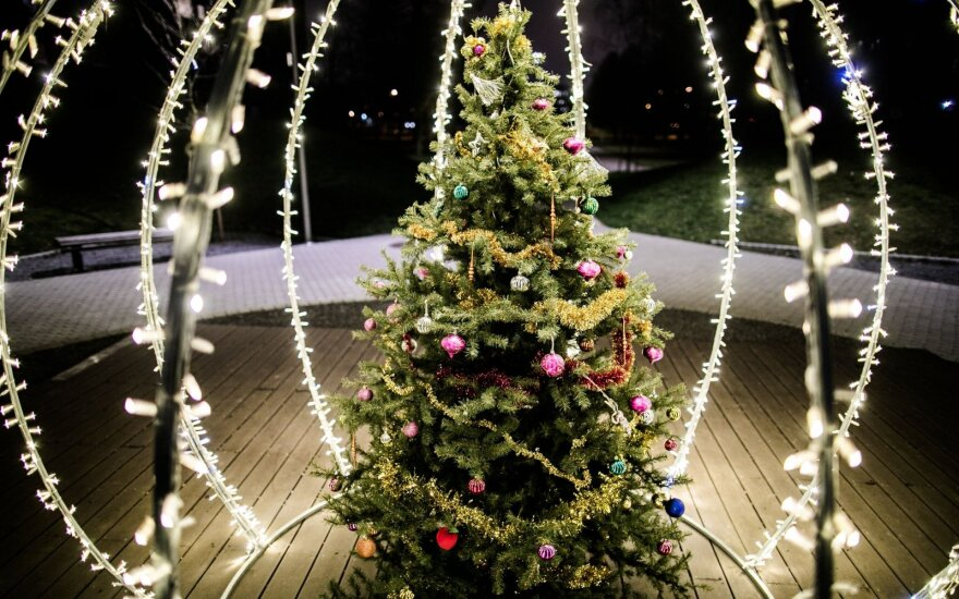 Įžiebta kalėdinė eglutė Žemynos gatvės skvere