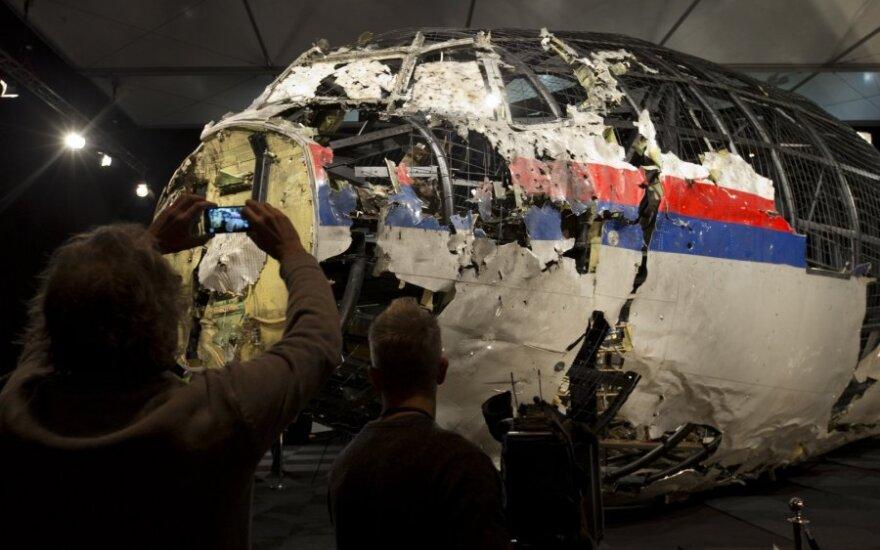 Advokatas siekia V. Putino atsakomybės dėl Malaizijos lėktuvo katastrofos