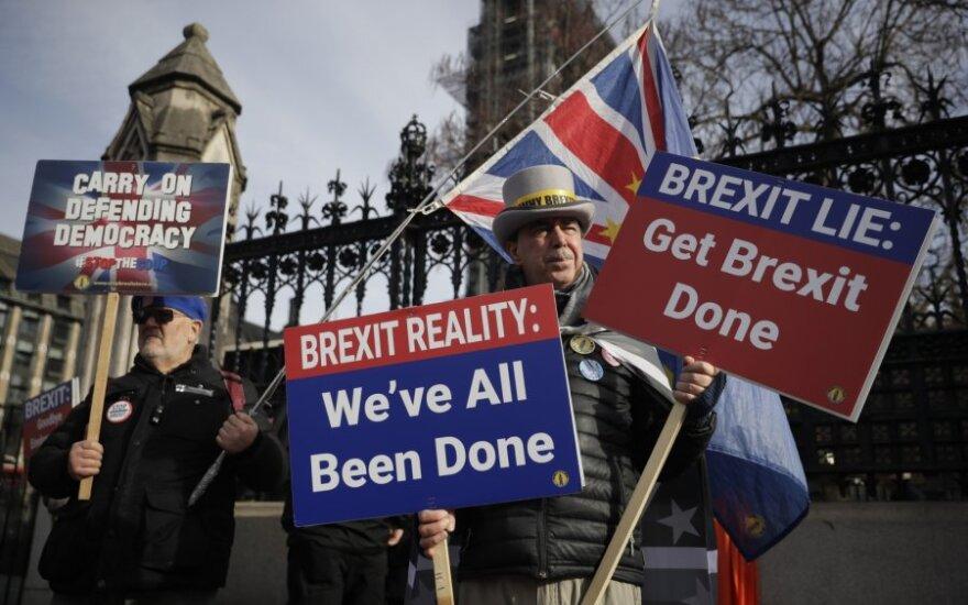 """""""Brexit"""" priešininkų mitingas"""
