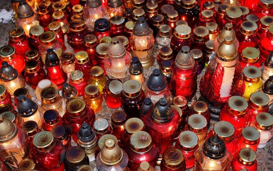 Žvakelės