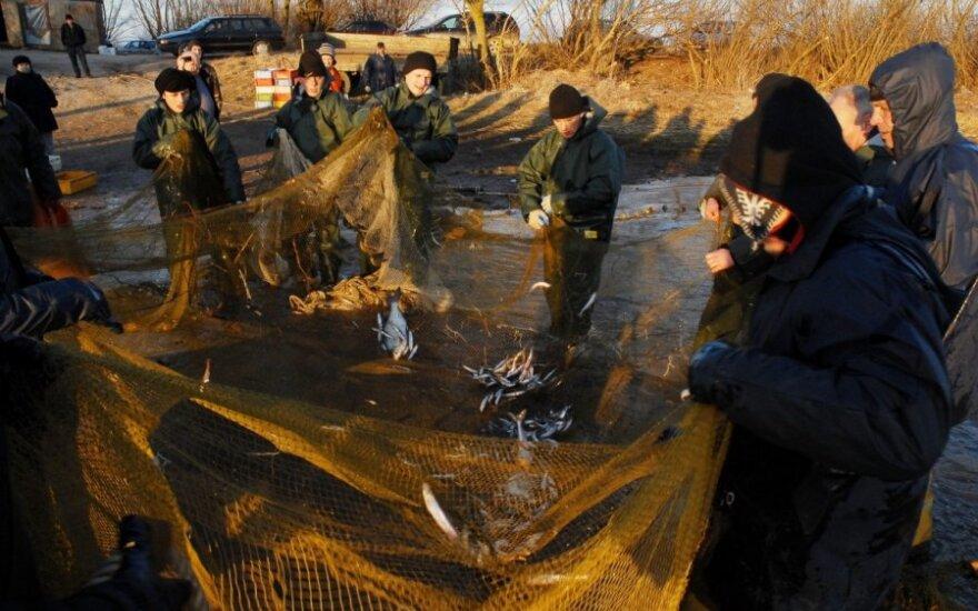 Žvejai verslininkai nori žvejybos kvotas gauti iš Žemės ūkio ministerijos