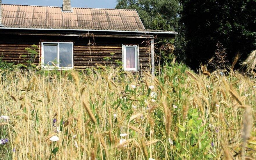 Siūloma sodininkų bendrijas integruoti į bendrą miestų infrastruktūrą