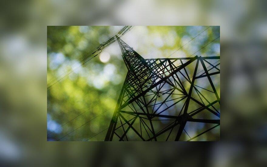 Ministerija nori plano dėl sodininkų elektros tinklų