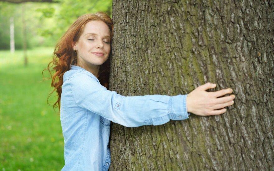 Medžio apkabinimas