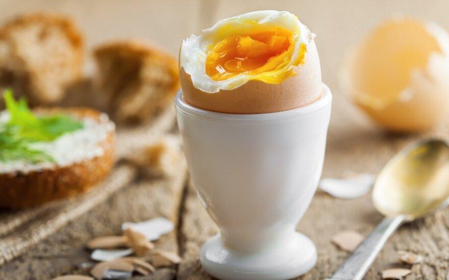 Kiaušiniai