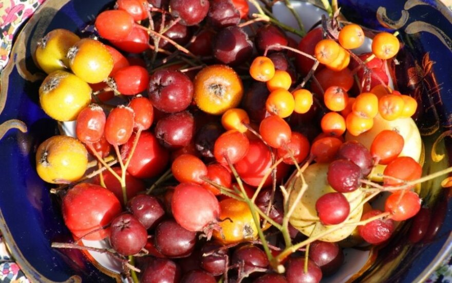 Širdį stiprinančios uogos, kurios taip pat mažina cholesterolį, kraujospūdį