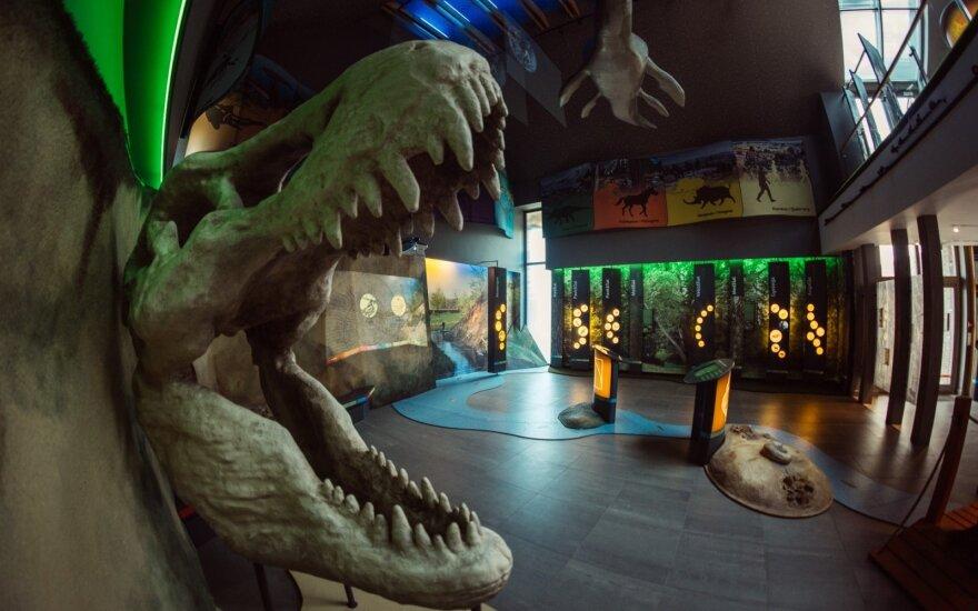 Lankytojų centre pasitinka dinozaurai