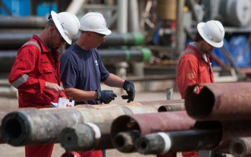 D. Britanija pateikė ES alternatyvų Rusijos dujoms